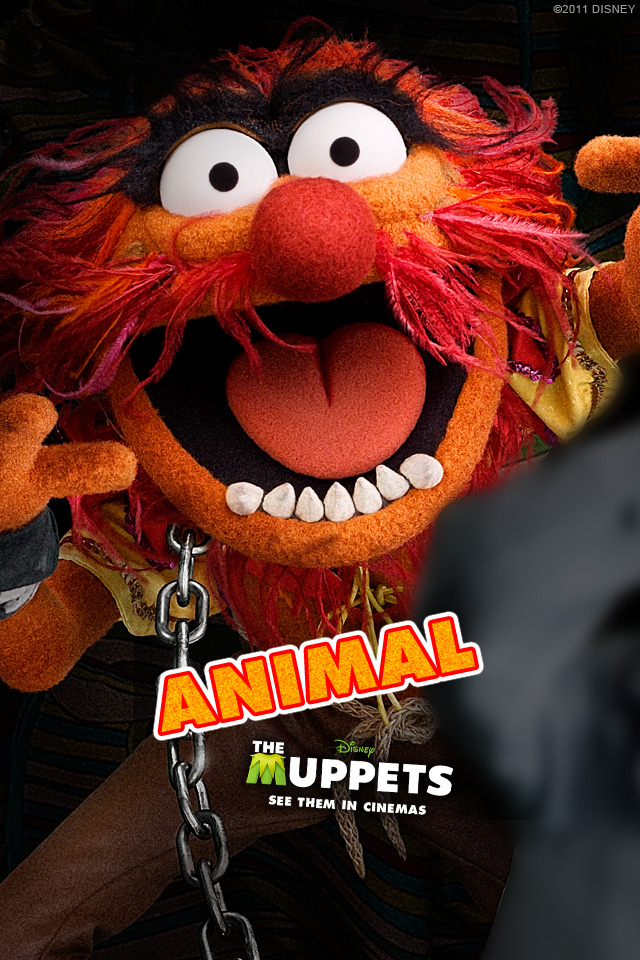 The Gallery For Gt The Muppets Animal Wallpaper